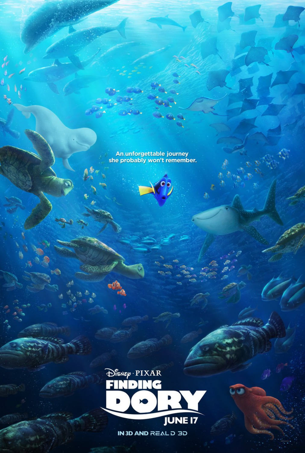10 - Finding Dory