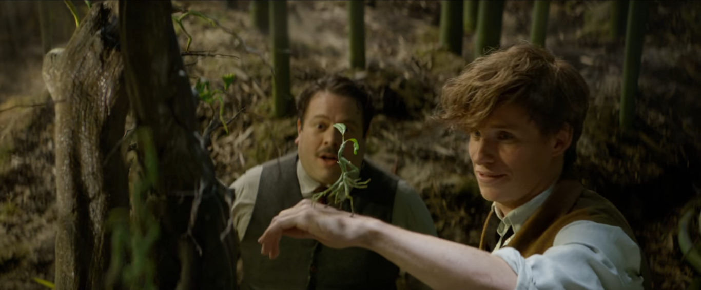 fantastic beasts review 4
